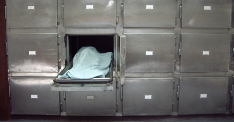 morgue_drawers-ARTICLE-SIZE